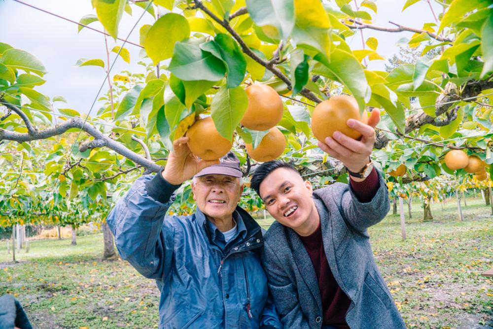 Mơ thấy hái trái cây