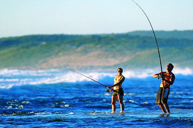 Mơ thấy câu cá